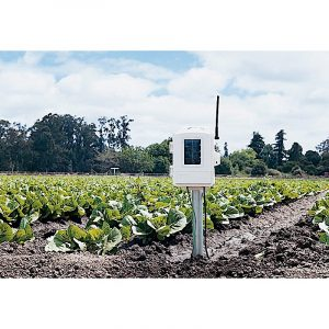 Wireless Leaf & Soil Moisture/Temperature Station